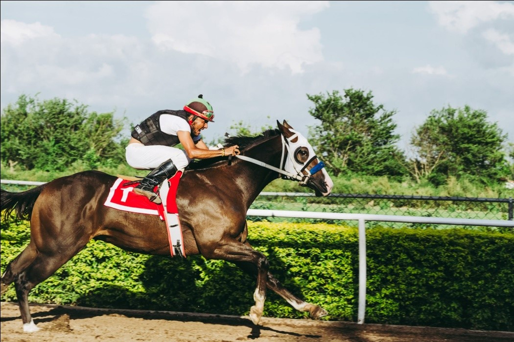 A jockey on a horse racing by